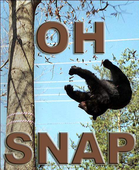 oh_snap.jpg